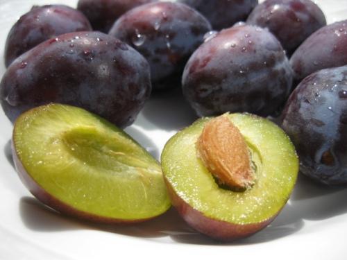 damson italian prune plums